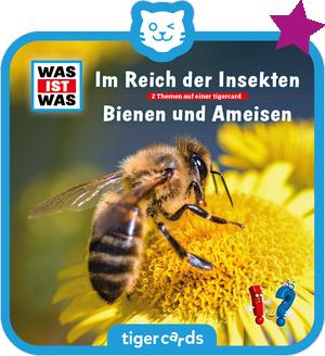 WAS IST WAS - Im Reich der Insekten/ Bienen und Ameisen